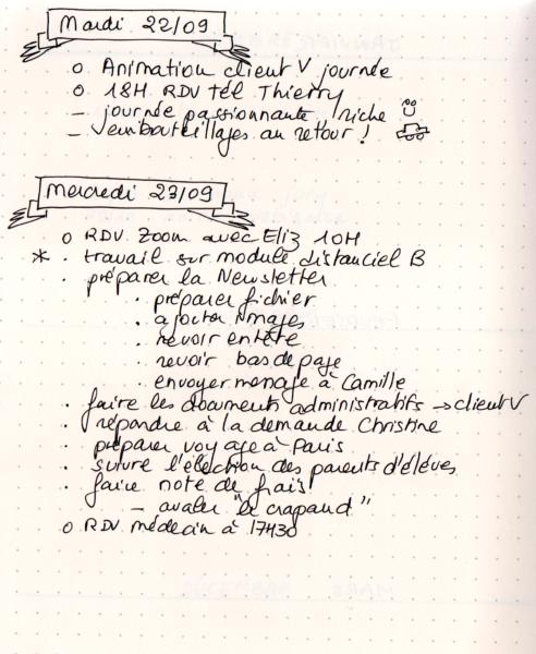 Bullet Journal extraits de journee